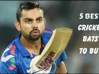 best cricket bats online
