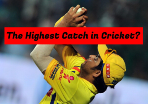 Who has Caught the Highest Catch in Cricket? – A Guinness  Record in Cricket History
