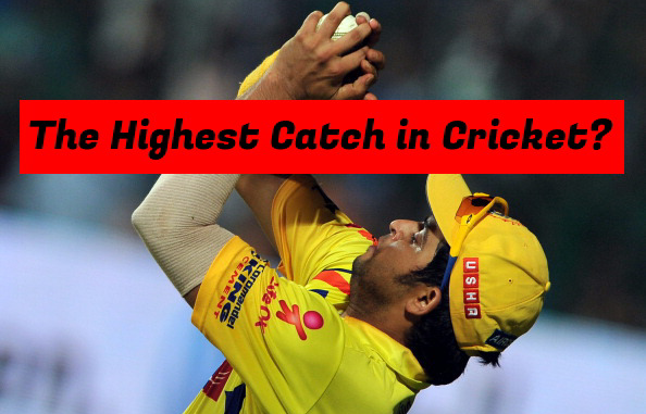 Highest Catch in Cricket